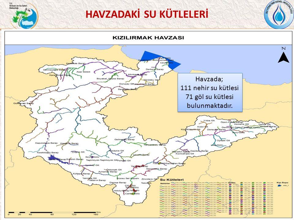 HAVZADAKİ SU KÜTLELERİ 37 Havzada; 111 nehir su kütlesi 71 göl su kütlesi bulunmaktadır.