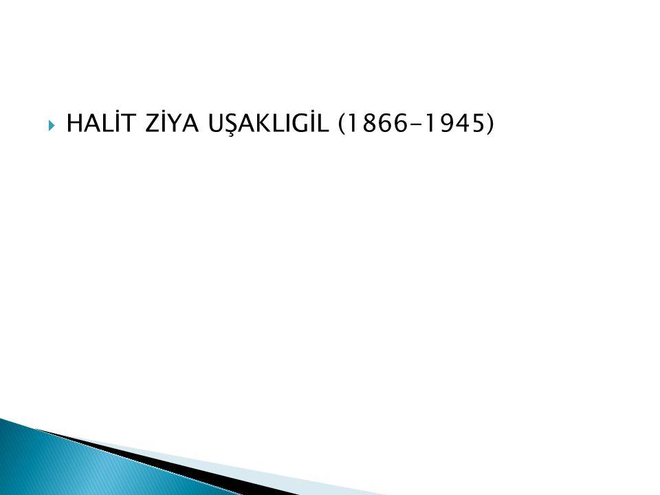 Eserleri:  Rubab-ı Şikeste, Haluk'un Defteri; Şermin (Çocuklar için hece ölçüsüyle yazdığı şiirler).