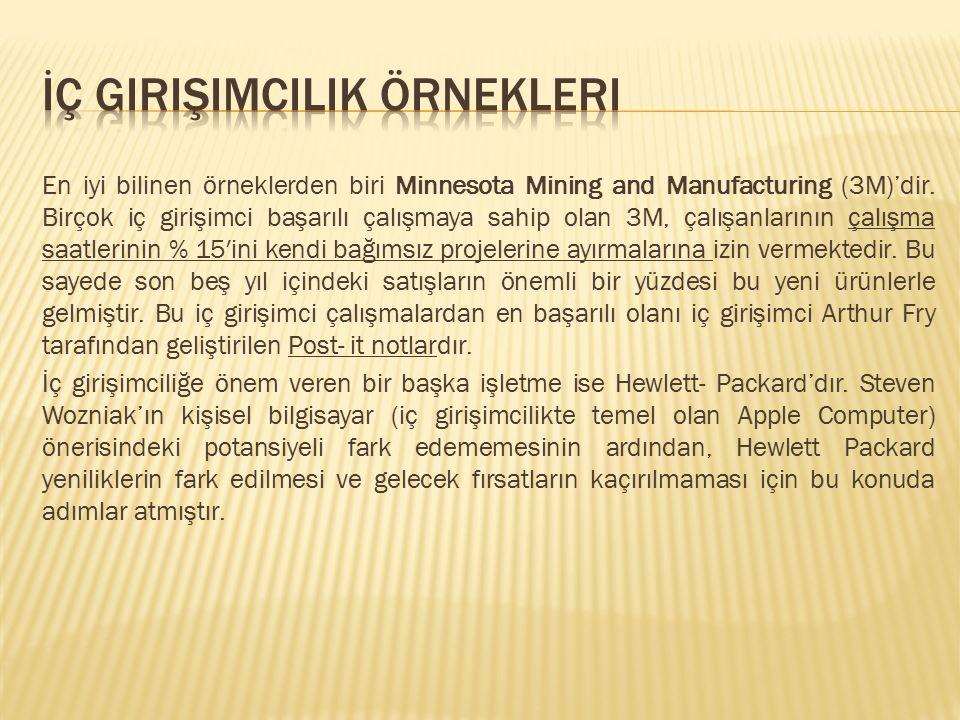 En iyi bilinen örneklerden biri Minnesota Mining and Manufacturing (3M)'dir. Birçok iç girişimci başarılı çalışmaya sahip olan 3M, çalışanlarının çalı