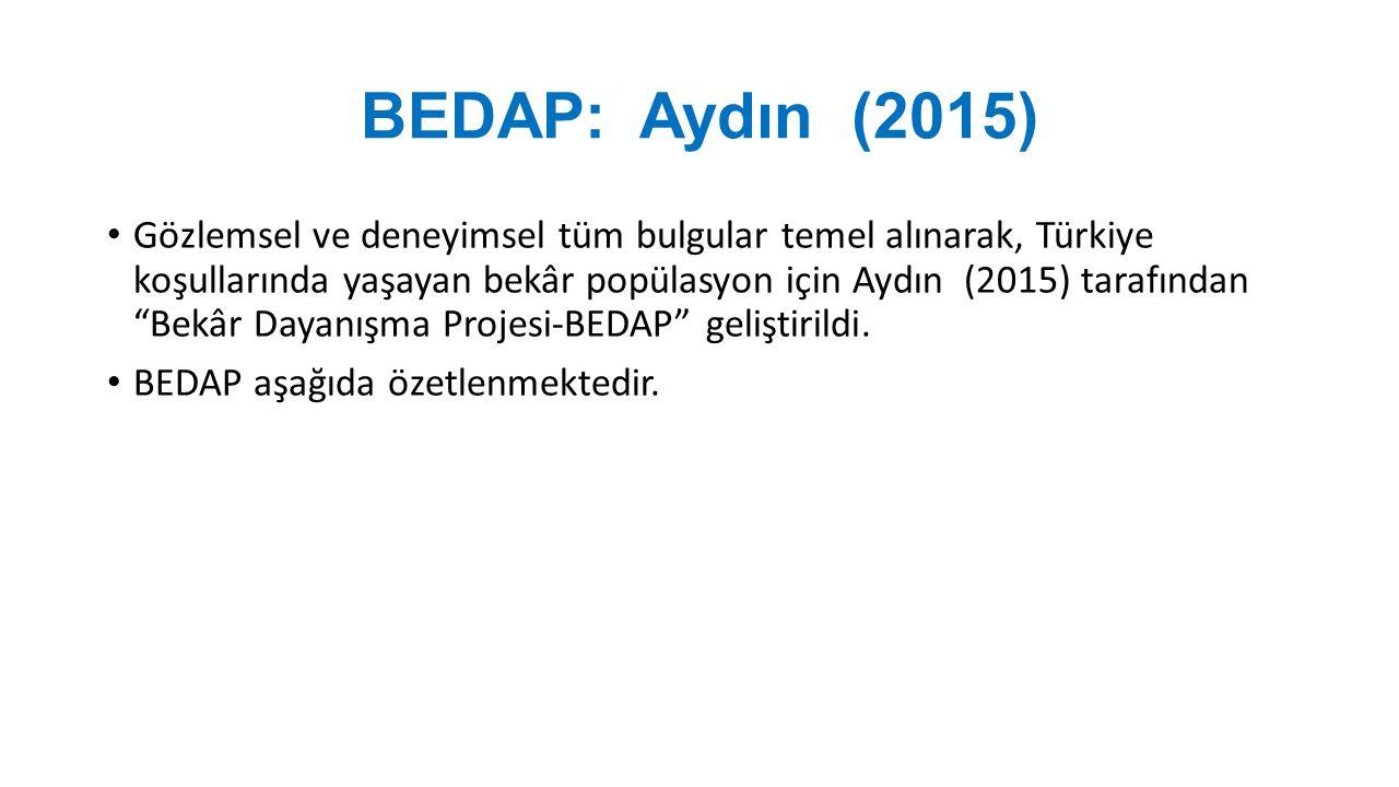 BEDAP: Aydın (2015) Gözlemsel ve deneyimsel tüm bulgular temel alınarak, Türkiye koşullarında yaşayan bekâr popülasyon için Aydın (2015) tarafından Bekâr Dayanışma Projesi-BEDAP geliştirildi.