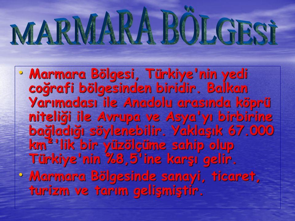 Bölgedeki en gelişmiş sanayi İstanbul- Bursa-Kocaeli şehirlerinde olmakla birlikte bölgenin diğer yörelerinde de yaygın sanayi faaliyetleri vardır.