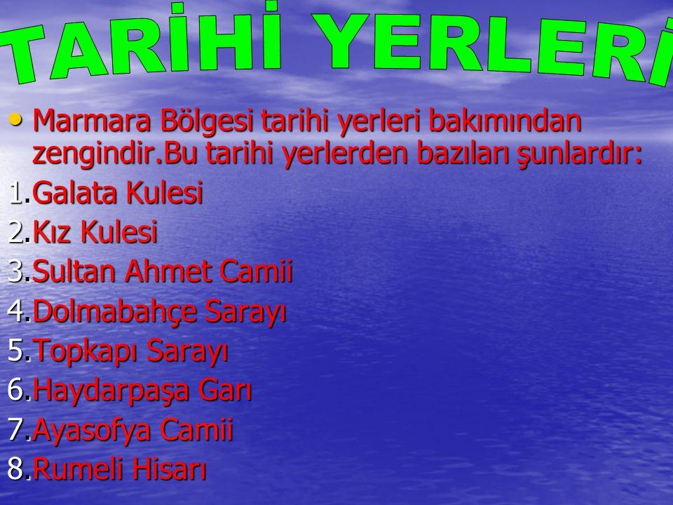 Marmara Bölgesi tarihi yerleri bakımından zengindir.Bu tarihi yerlerden bazıları şunlardır: Marmara Bölgesi tarihi yerleri bakımından zengindir.Bu tar