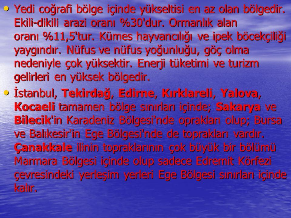Bölümün en önemli yerleşim birimi Bursa dır.