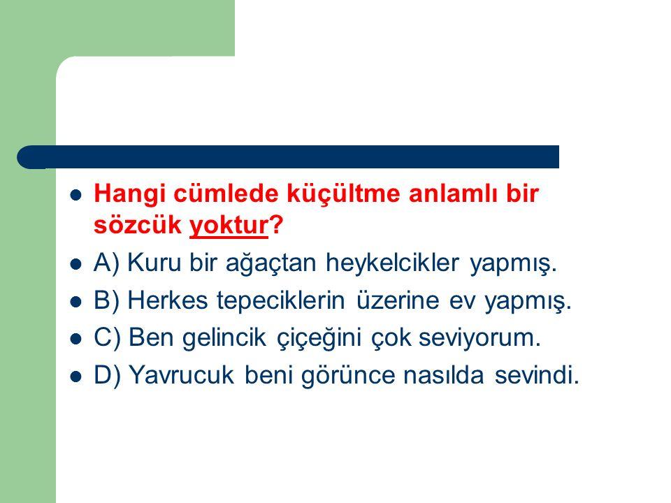 (1) İstanbul'un insanı kendine bağlayan, vazgeçilmez bir yanı var.