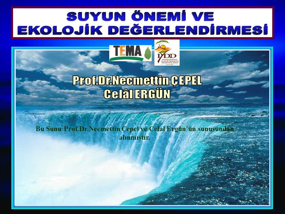 Bu Sunu Prof.Dr.Necmettin Çepel ve Celal Ergün'ün sunusundan alınmıştır.
