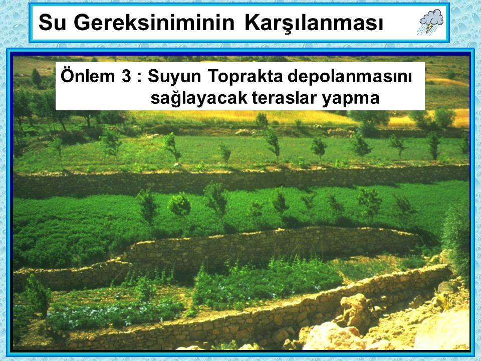 Su Gereksiniminin Karşılanması Önlem 3 : Suyun Toprakta depolanmasını sağlayacak teraslar yapma