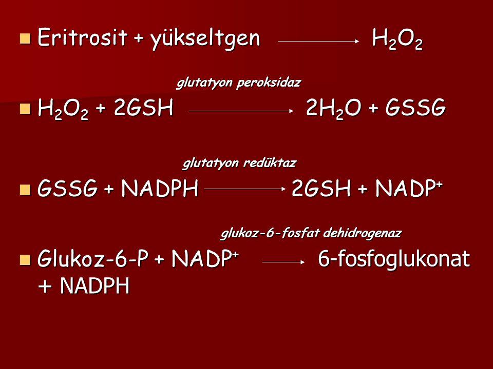 Eritrosit + yükseltgen H 2 O 2 Eritrosit + yükseltgen H 2 O 2 glutatyon peroksidaz glutatyon peroksidaz H 2 O 2 + 2GSH 2H 2 O + GSSG H 2 O 2 + 2GSH 2H