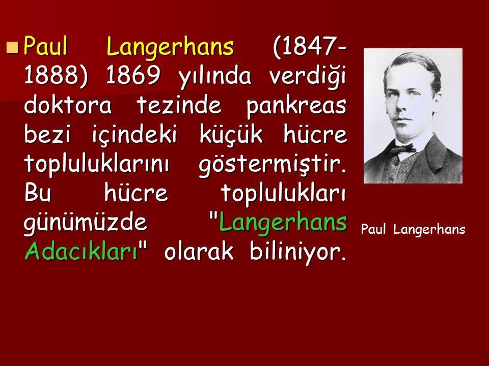 Paul Langerhans (1847- 1888) 1869 yılında verdiği doktora tezinde pankreas bezi içindeki küçük hücre topluluklarını göstermiştir.