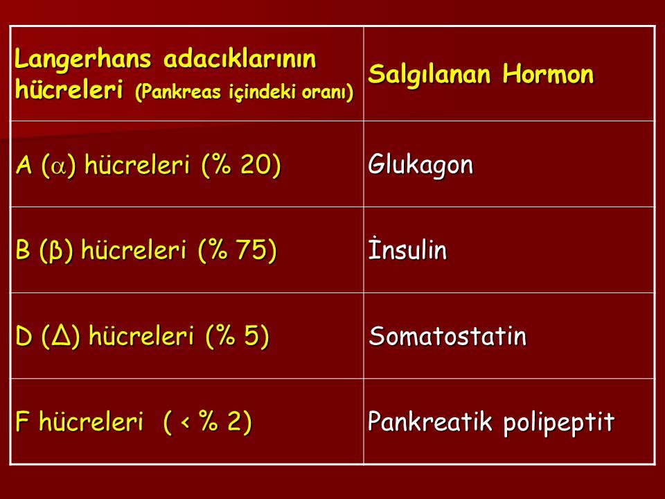 Langerhans adacıklarının hücreleri (Pankreas içindeki oranı) Salgılanan Hormon A (  ) hücreleri (% 20) Glukagon B (β) hücreleri (% 75) İnsulin D (Δ) hücreleri (% 5) Somatostatin F hücreleri ( ‹ % 2) Pankreatik polipeptit