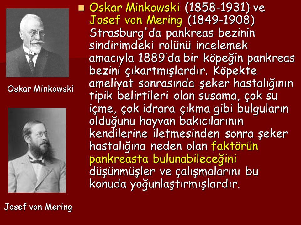 Oskar Minkowski (1858-1931) ve Josef von Mering (1849-1908) Strasburg'da pankreas bezinin sindirimdeki rolünü incelemek amacıyla 1889'da bir köpeğin p