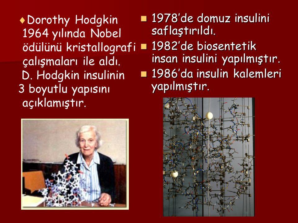  Dorothy Hodgkin 1964 yılında Nobel ödülünü kristallografi çalışmaları ile aldı. D. Hodgkin insulinin 3 boyutlu yapısını açıklamıştır. 1978'de domuz