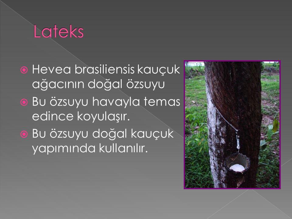  Hevea brasiliensis kauçuk ağacının doğal özsuyu  Bu özsuyu havayla temas edince koyulaşır.