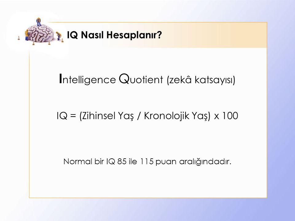 IQ Nasıl Hesaplanır.