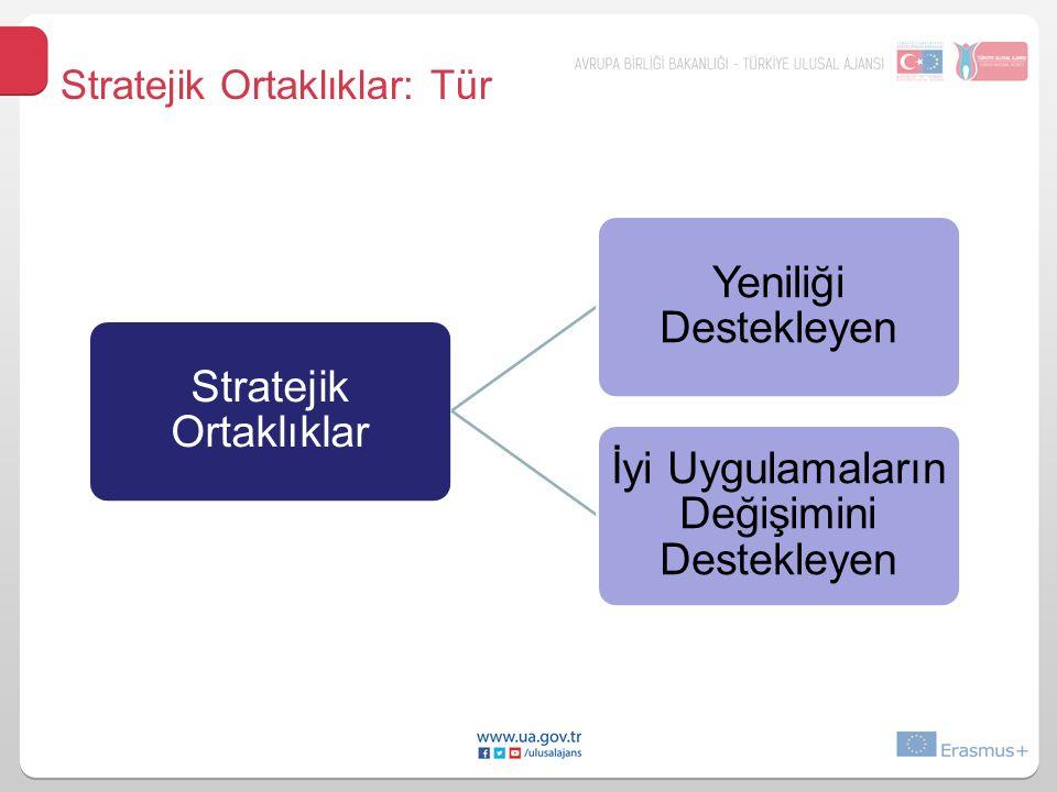 Stratejik Ortaklıklar Yeniliği Destekleyen İyi Uygulamaların Değişimini Destekleyen Stratejik Ortaklıklar: Tür