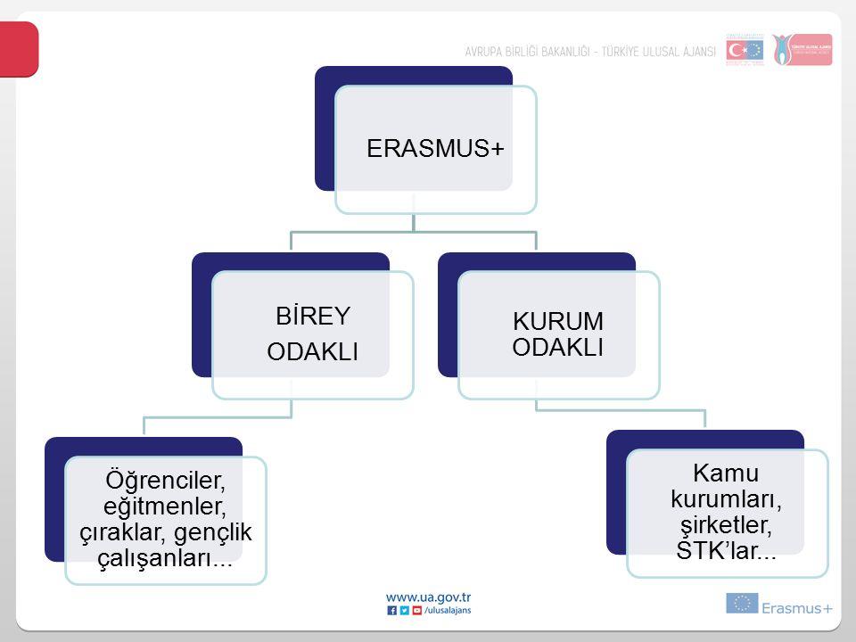 ERASMUS+ BİREY ODAKLI Öğrenciler, eğitmenler, çıraklar, gençlik çalışanları...