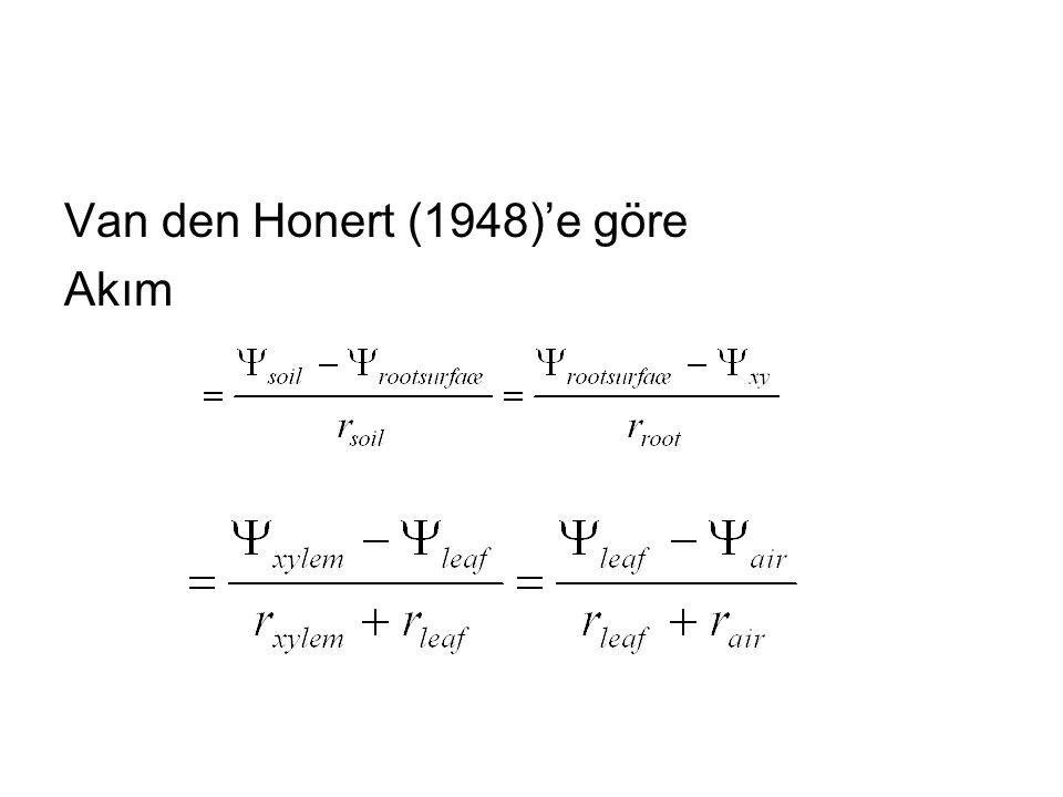 Van den Honert (1948)'e göre Akım
