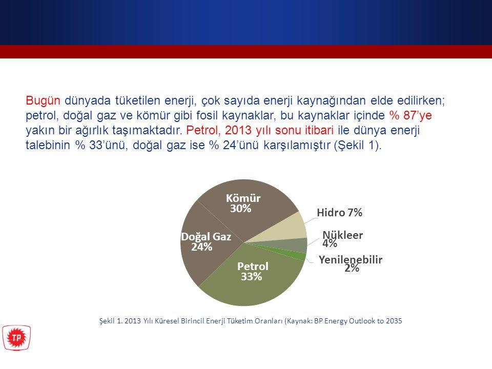 Kömür 30% Doğal Gaz 24% Petrol 33% Hidro 7% Nükleer 4% Yenilenebilir 2% Şekil 1. 2013 Yılı Küresel Birincil Enerji Tüketim Oranları (Kaynak: BP Energy