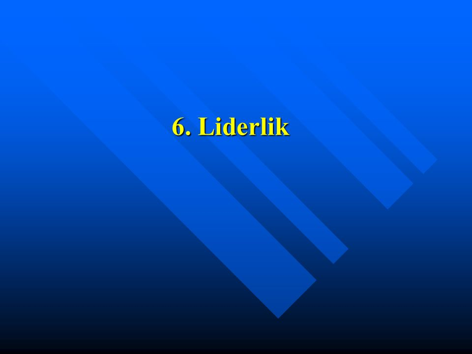 6. Liderlik