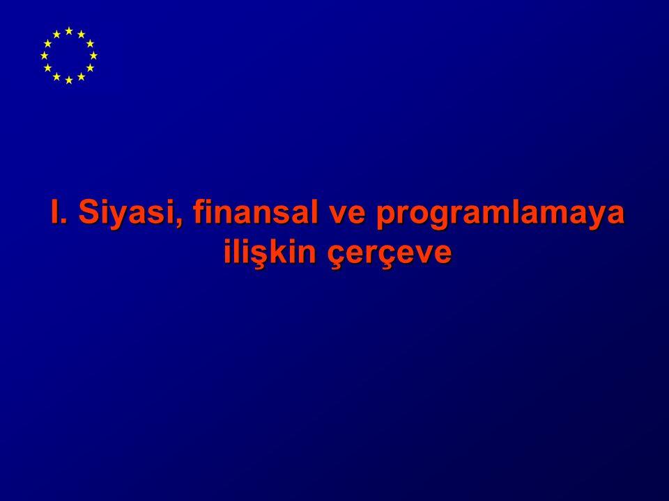 I. Siyasi, finansal ve programlamaya ilişkin çerçeve