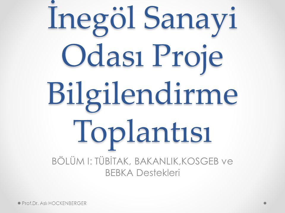 TEKNOLOJİ TRANSFER OFİSİ Prof.Dr. Aslı HOCKENBERGER