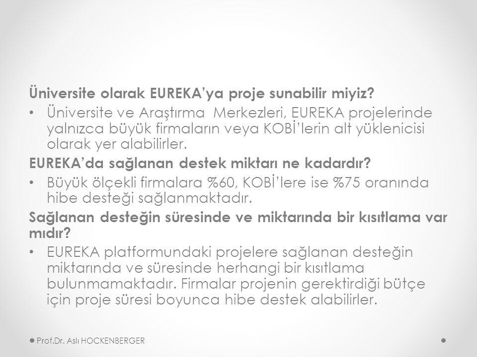 Üniversite olarak EUREKA'ya proje sunabilir miyiz.