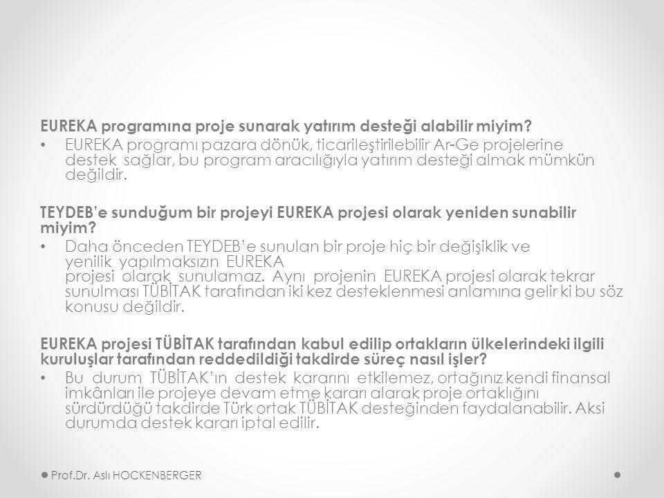 EUREKA programına proje sunarak yatırım desteği alabilir miyim.