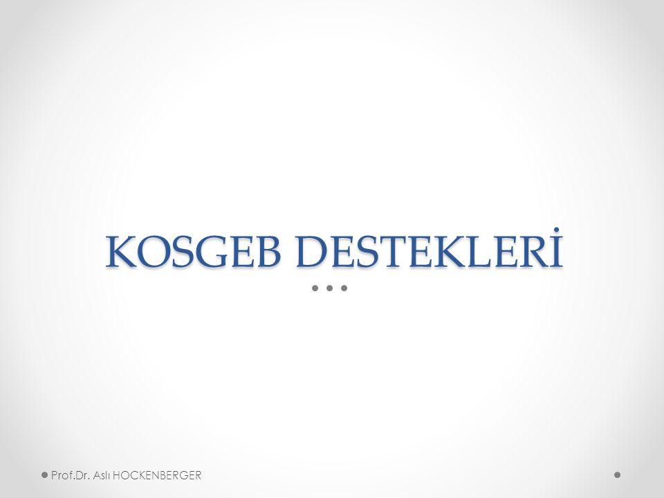 KOSGEB DESTEKLERİ Prof.Dr. Aslı HOCKENBERGER
