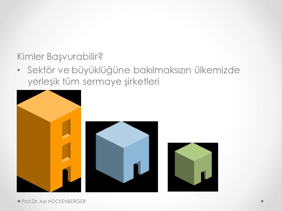 AB BAKANLIĞI DESTEKLERİ Prof.Dr. Aslı HOCKENBERGER