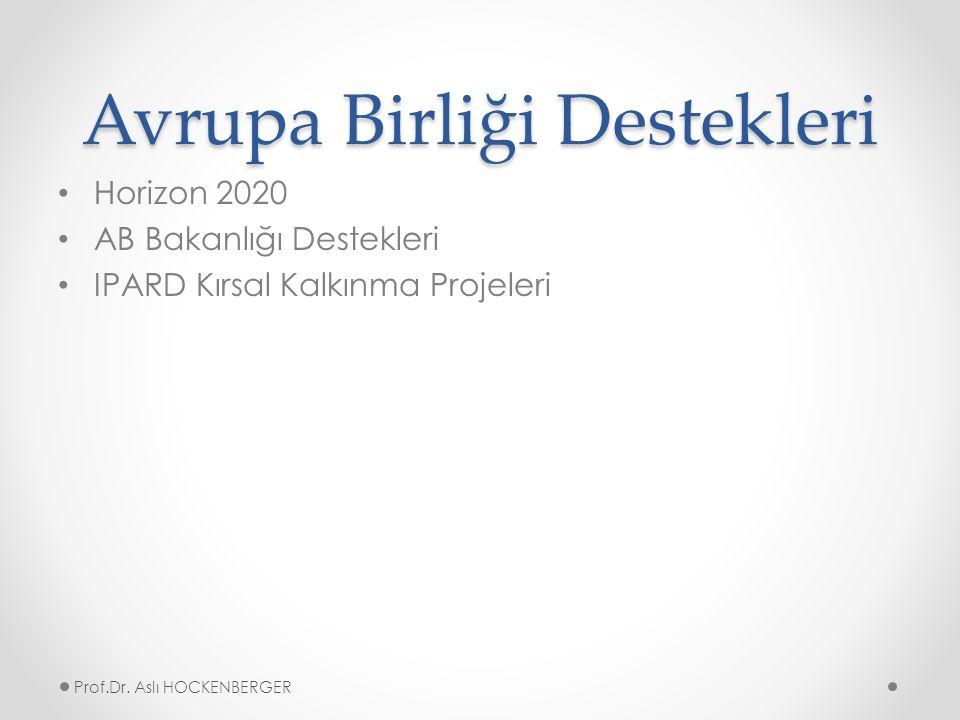 Avrupa Birliği Destekleri Horizon 2020 AB Bakanlığı Destekleri IPARD Kırsal Kalkınma Projeleri Prof.Dr.