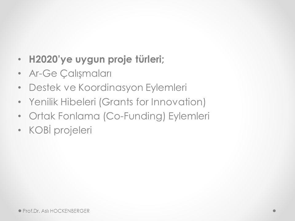 H2020'ye uygun proje türleri; Ar-Ge Çalışmaları Destek ve Koordinasyon Eylemleri Yenilik Hibeleri (Grants for Innovation) Ortak Fonlama (Co-Funding) Eylemleri KOBİ projeleri Prof.Dr.