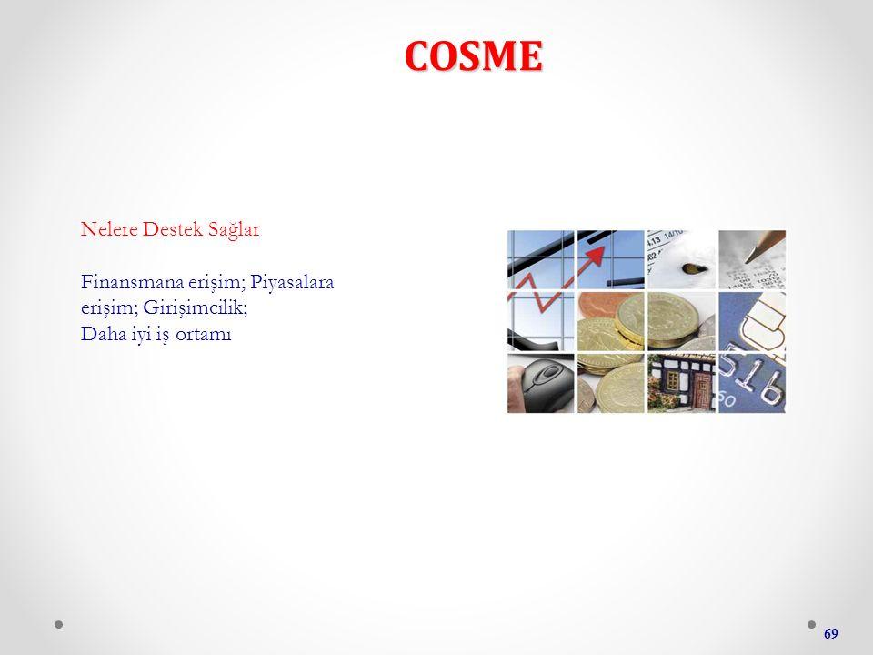 COSME 69 Nelere Destek Sağlar Finansmana erişim; Piyasalara erişim; Girişimcilik; Daha iyi iş ortamı