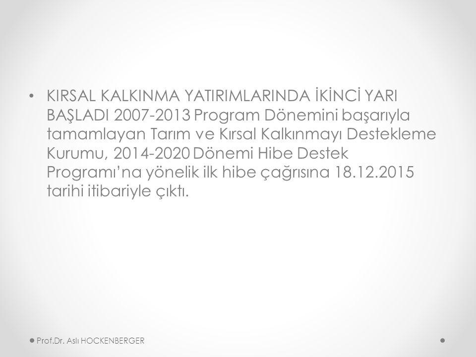 KIRSAL KALKINMA YATIRIMLARINDA İKİNCİ YARI BAŞLADI 2007-2013 Program Dönemini başarıyla tamamlayan Tarım ve Kırsal Kalkınmayı Destekleme Kurumu, 2014-2020 Dönemi Hibe Destek Programı'na yönelik ilk hibe çağrısına 18.12.2015 tarihi itibariyle çıktı.