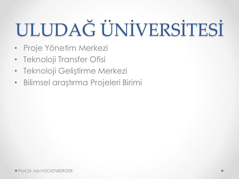 ULUDAĞ ÜNİVERSİTESİ Proje Yönetim Merkezi Teknoloji Transfer Ofisi Teknoloji Geliştirme Merkezi Bilimsel araştırma Projeleri Birimi Prof.Dr.
