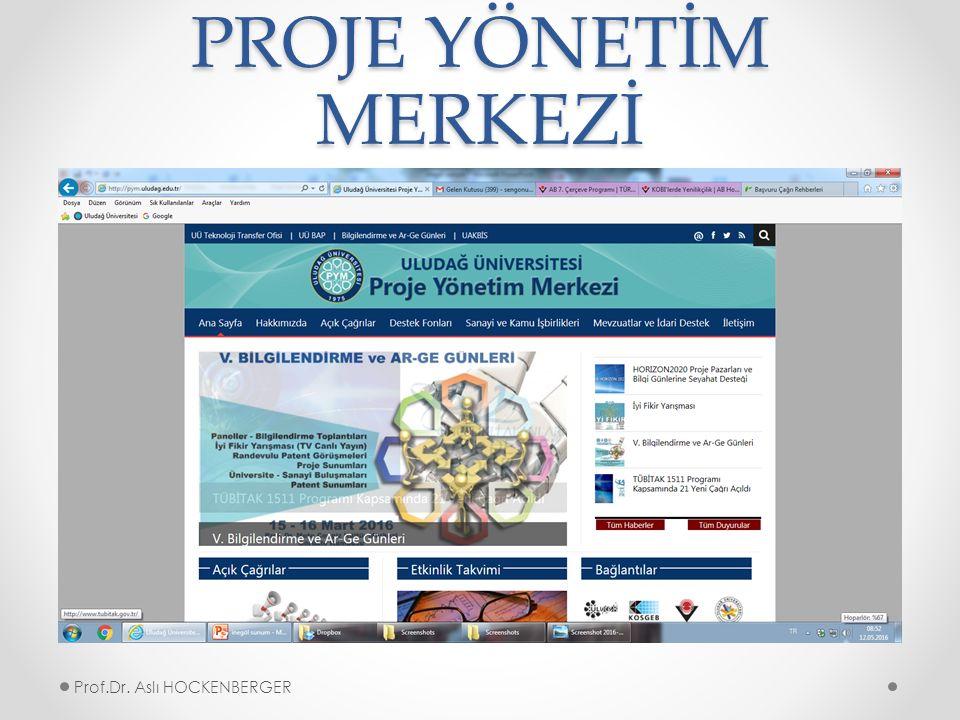 PROJE YÖNETİM MERKEZİ Prof.Dr. Aslı HOCKENBERGER