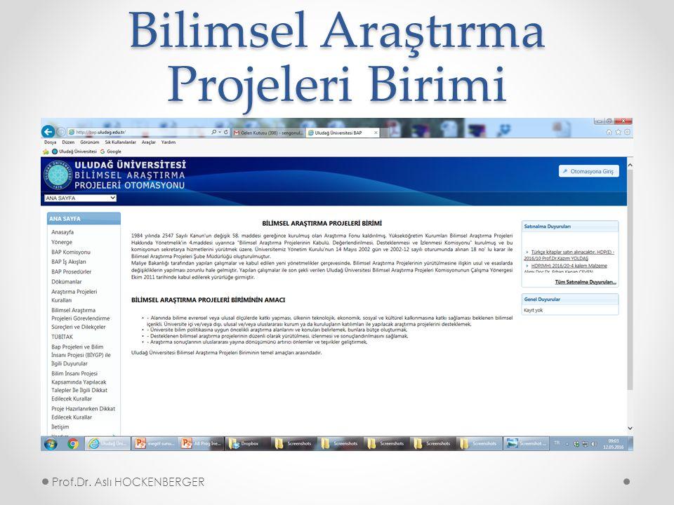 Bilimsel Araştırma Projeleri Birimi Prof.Dr. Aslı HOCKENBERGER