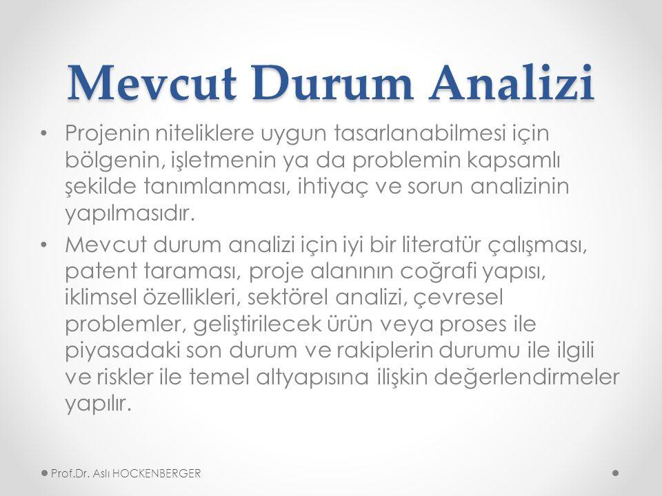 Mevcut Durum Analizi Projenin niteliklere uygun tasarlanabilmesi için bölgenin, işletmenin ya da problemin kapsamlı şekilde tanımlanması, ihtiyaç ve sorun analizinin yapılmasıdır.