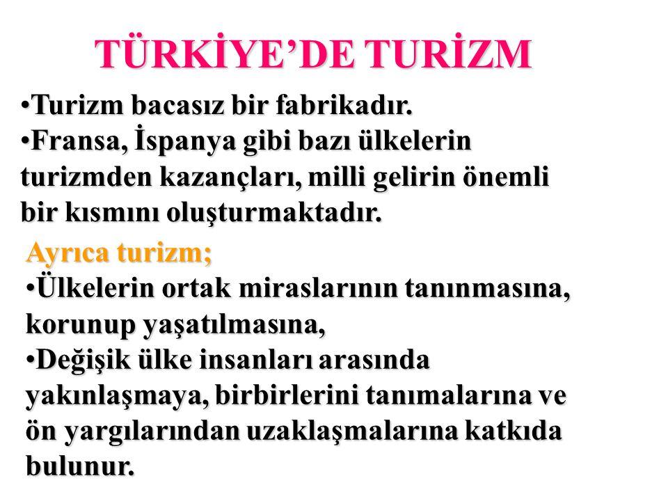 TÜRKİYE'DE TURİZM Turizm bacasız bir fabrikadır.Turizm bacasız bir fabrikadır.