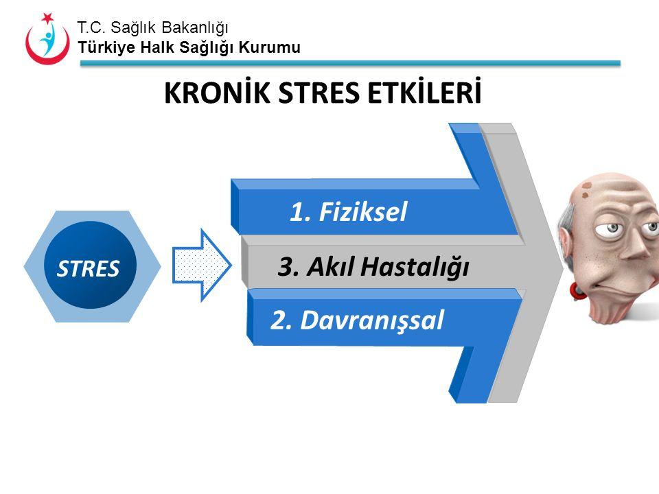 T.C. Sağlık Bakanlığı Türkiye Halk Sağlığı Kurumu STRES 1. Fiziksel 3. Akıl Hastalığı 2. Davranışsal