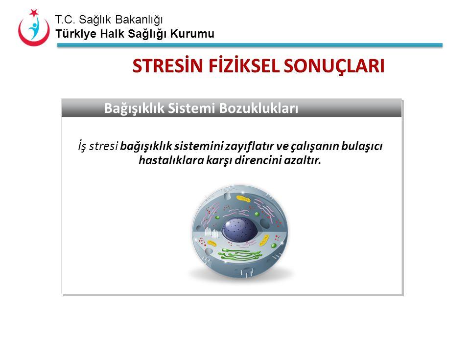 T.C. Sağlık Bakanlığı Türkiye Halk Sağlığı Kurumu Bağışıklık Sistemi Bozuklukları İş stresi bağışıklık sistemini zayıflatır ve çalışanın bulaşıcı hast