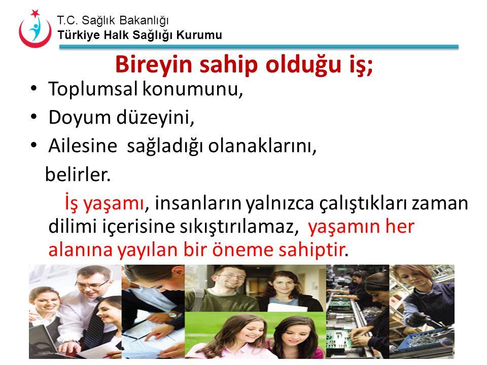 T.C. Sağlık Bakanlığı Türkiye Halk Sağlığı Kurumu Bireyin sahip olduğu iş; Toplumsal konumunu, Doyum düzeyini, Ailesine sağladığı olanaklarını, belirl
