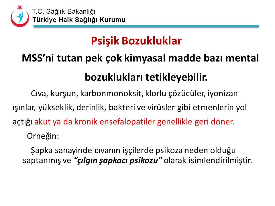 T.C. Sağlık Bakanlığı Türkiye Halk Sağlığı Kurumu MSS'ni tutan pek çok kimyasal madde bazı mental bozuklukları tetikleyebilir. Cıva, kurşun, karbonmon