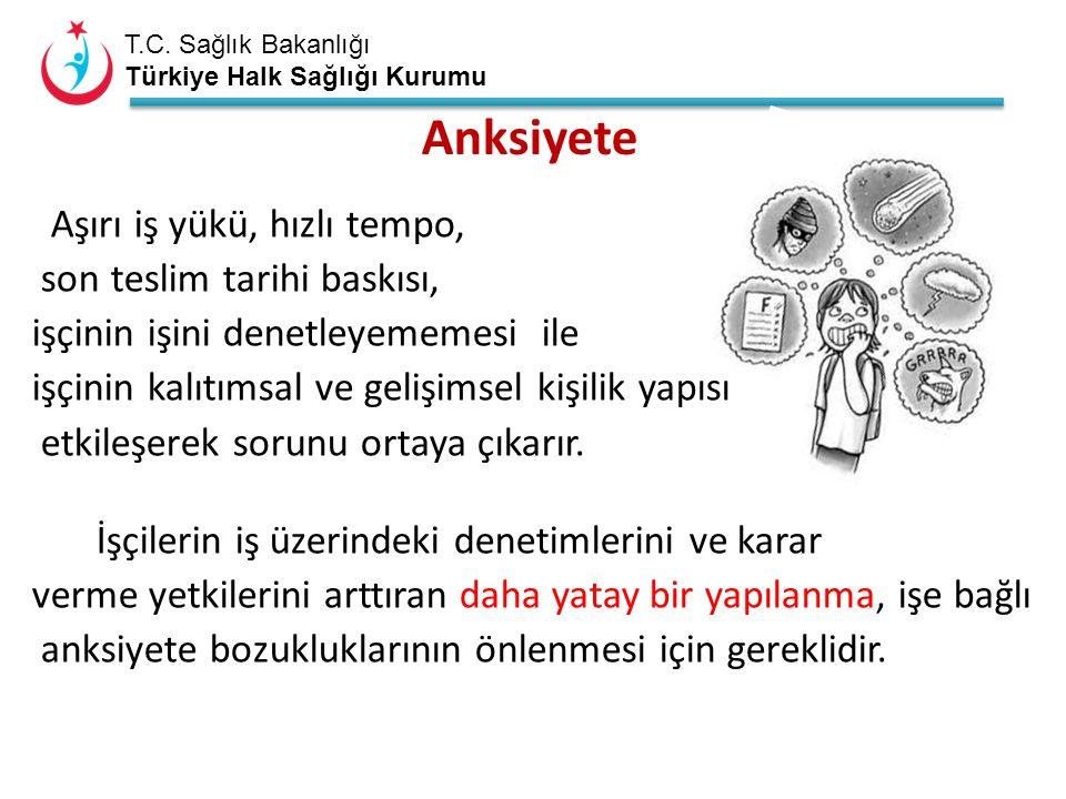 T.C. Sağlık Bakanlığı Türkiye Halk Sağlığı Kurumu Anksiyete Aşırı iş yükü, hızlı tempo, son teslim tarihi baskısı, işçinin işini denetleyememesi ile i