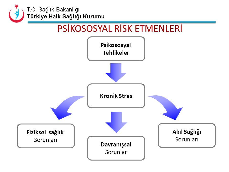 T.C. Sağlık Bakanlığı Türkiye Halk Sağlığı Kurumu Psikososyal Tehlikeler Kronik Stres Fiziksel sağlık Sorunları Davranışsal Sorunlar Akıl Sağlığı Soru