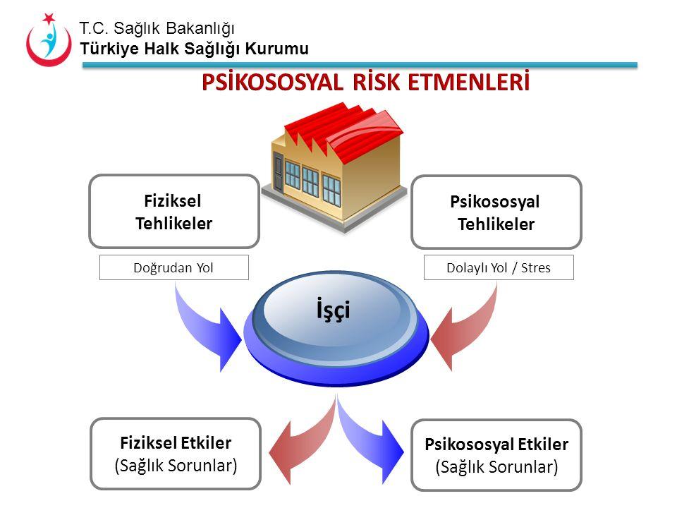 T.C. Sağlık Bakanlığı Türkiye Halk Sağlığı Kurumu Fiziksel Tehlikeler Psikososyal Tehlikeler İşçi Doğrudan YolDolaylı Yol / Stres Fiziksel Etkiler (Sa