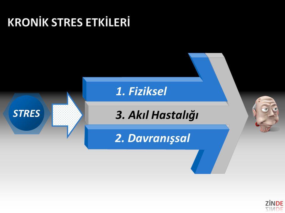 3. Akıl Hastalığı STRES 1. Fiziksel 2. Davranışsal