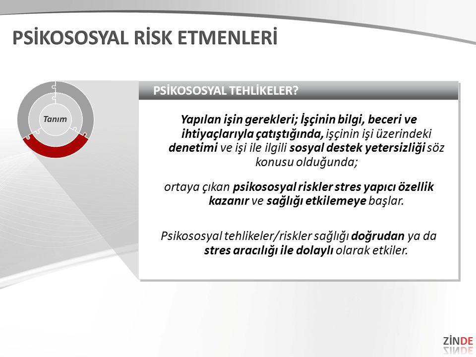 PSİKOSOSYAL TEHLİKELER.