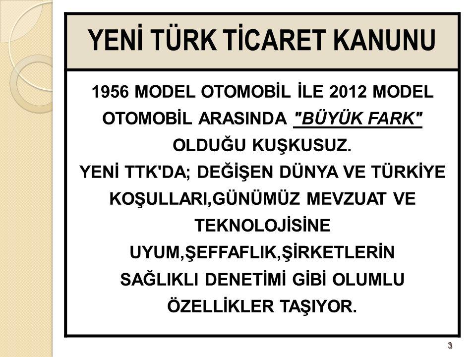 164164 LTD/BAĞIMSIZ DENETÇİ NELERİ DENETLEYECEK.