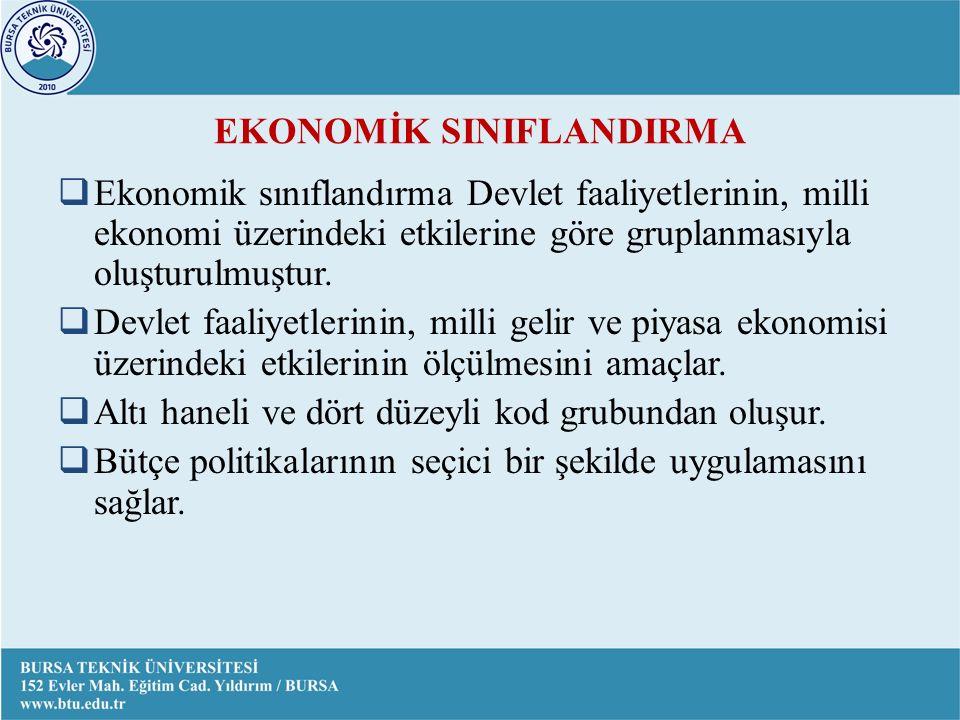 EKONOMİK SINIFLANDIRMA  Ekonomik sınıflandırma Devlet faaliyetlerinin, milli ekonomi üzerindeki etkilerine göre gruplanmasıyla oluşturulmuştur.