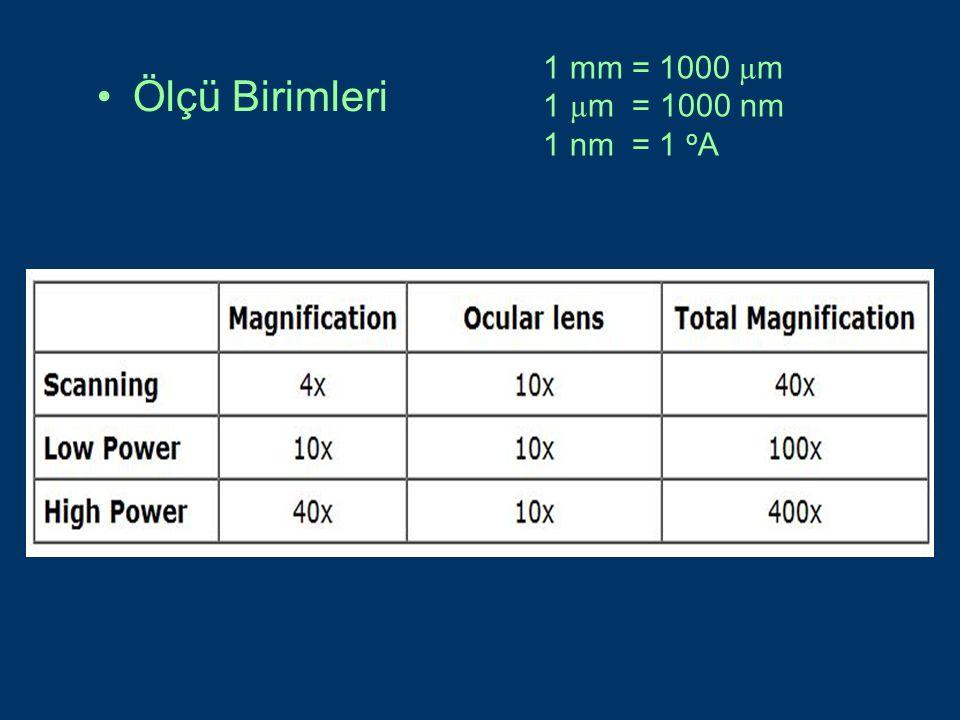 Ölçü Birimleri 1 mm = 1000 µ m 1 µ m = 1000 nm 1 nm = 1 o A