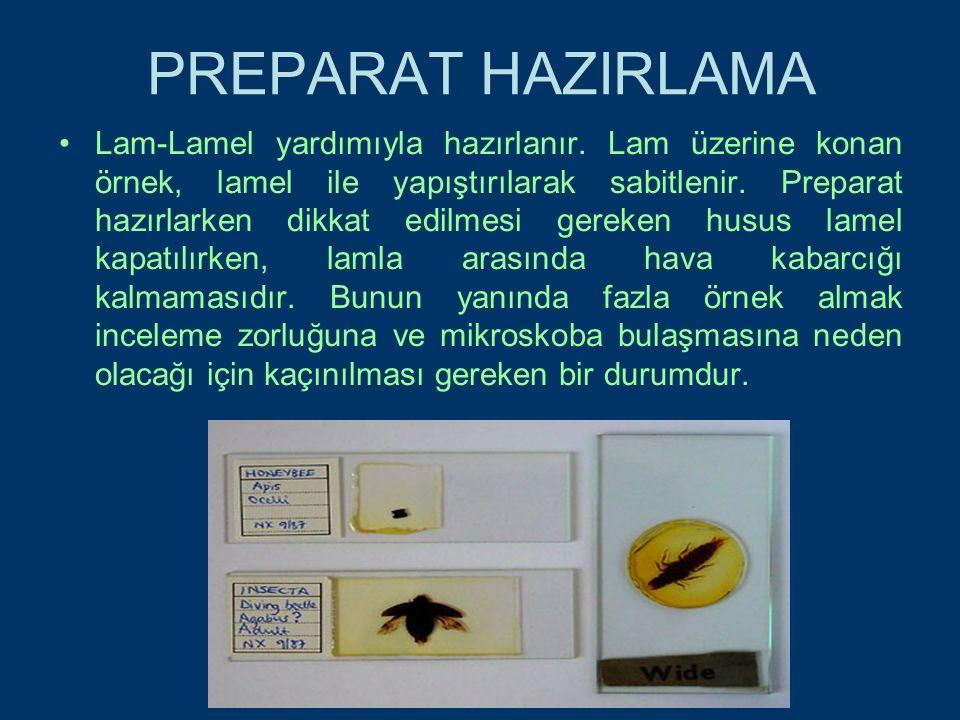 PREPARAT HAZIRLAMA Lam-Lamel yardımıyla hazırlanır.